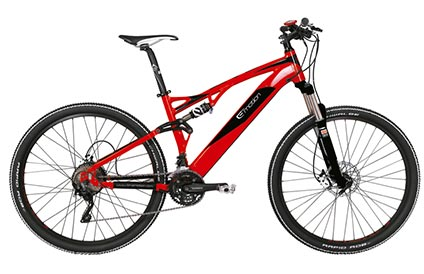 EVO Jumper 29er Electric Bike